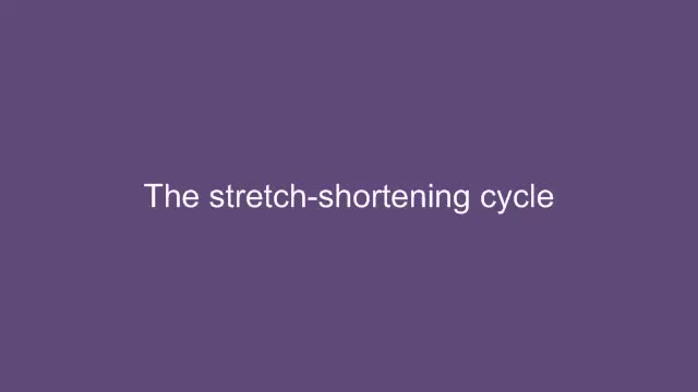 Assessment of neuromuscular power: Stretch shortening cycle (SSC)